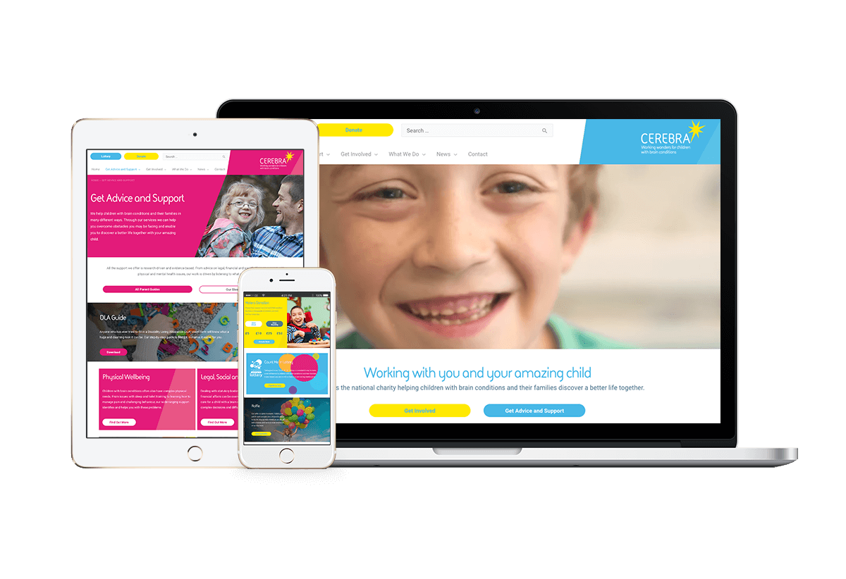 Cerebra website redesign project