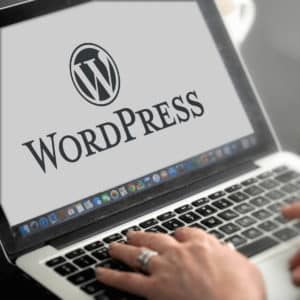 Making WordPress websites work